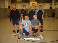 20080613_2005444082_volleyball7.jpg